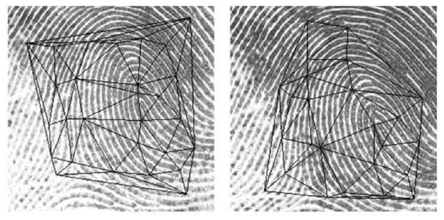 Delaunay triangulation based technique for fingerprint matching