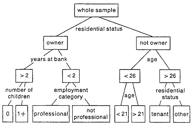 An example of a CART diagram showing classification of training cases in a credit risk assessment exercise.