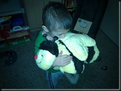 12-31-2010 pillow pet named tear (2)