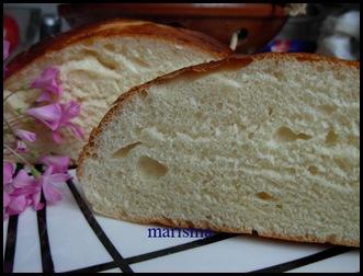pan de leche santa rita,racion (15)