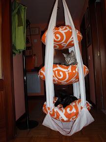 Trapecio para gatos P7080007