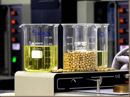 biodiesel2