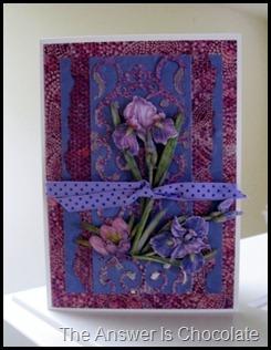 KandCo Iris Card