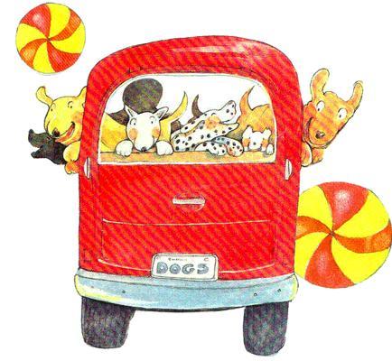 cachorro e gato no ônibus
