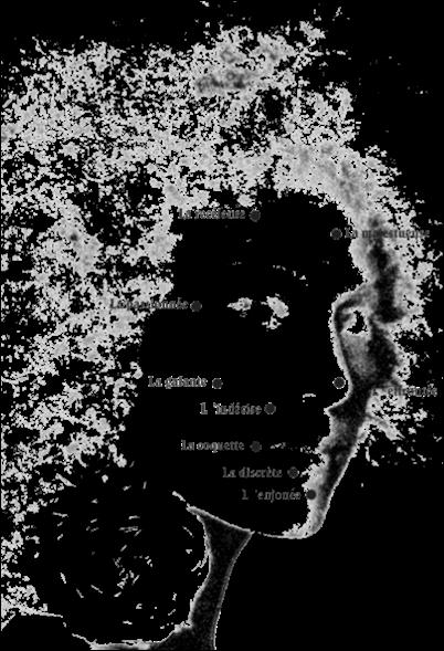 Face_mouches de beaute chez Arteeshirt.com