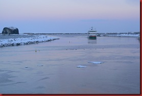 2011-02-05 Drift Ice 01