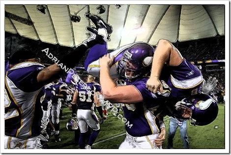 Funny Minnesota Vikings picture.
