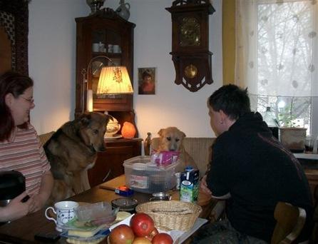 gemeinsames Frühstück 11 02 2010 002