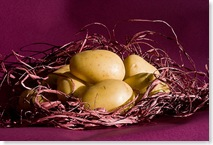 patate raccolta