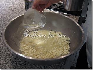 mozzarella 101 (2)