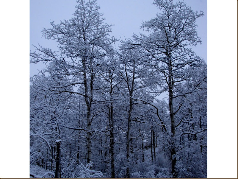 First Snowfall November