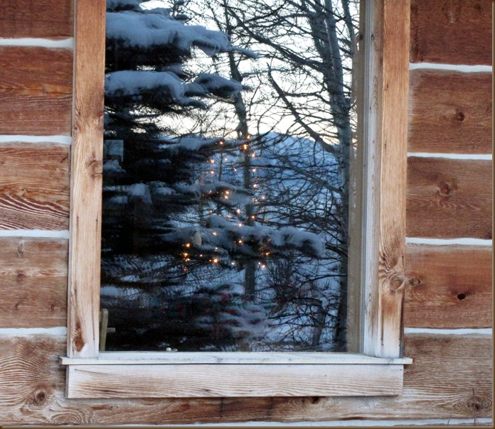 Christmas Tree thru window