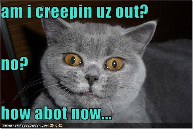funny-pictures-cat-is-creepy
