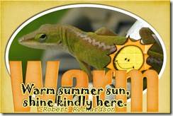 cwooddell_warmsummerquote_qp1lizardWEB