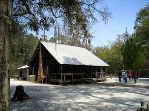 Swamper House