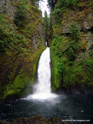 Wahclella Falls in the Columbia River Gorge