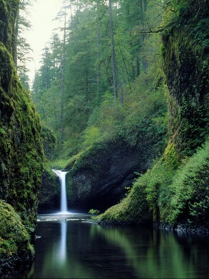 Punchbowl Falls on the Eagle Creek Trail