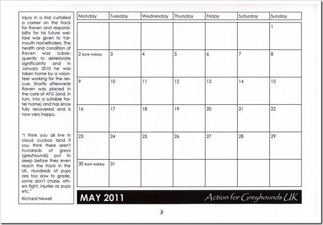 AFG 2010 Calendar Raven1