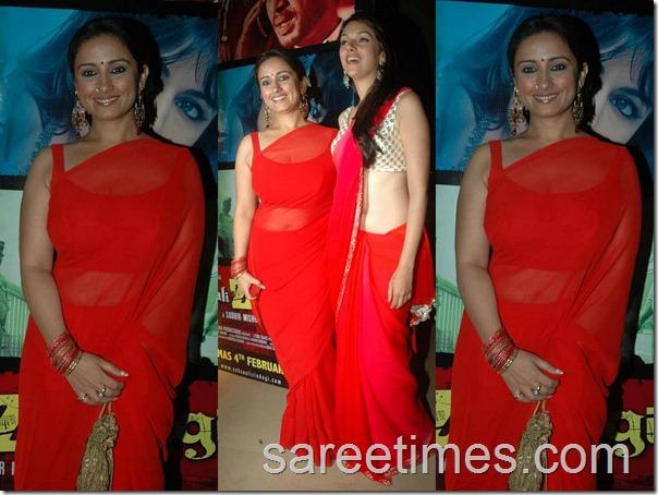 yeah_saali_jindhagi1_sexy_sari