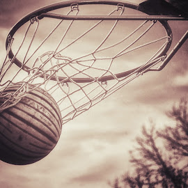 Swoosh by Greg Watkins - Sports & Fitness Basketball