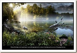 monday herons
