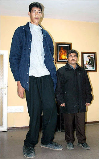 Sultan Kösen - World's tallest man
