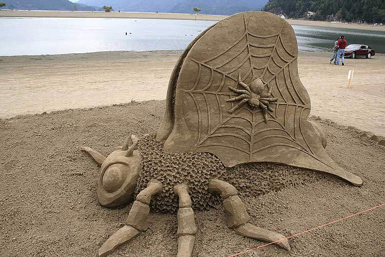 This year's sand castles competition - Stunning
