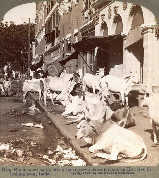 INDIA 99 years back!!!!