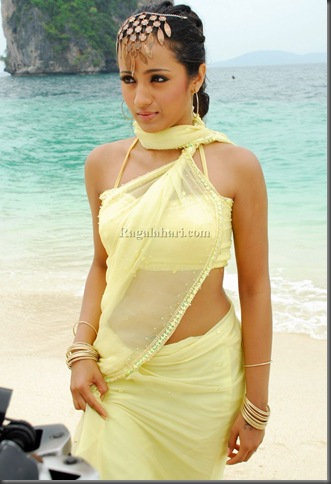 trisha hot kollywood actress pictures280110