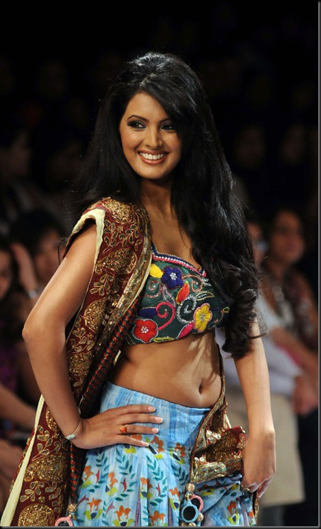 Lakme Fashion Week 2011 pics