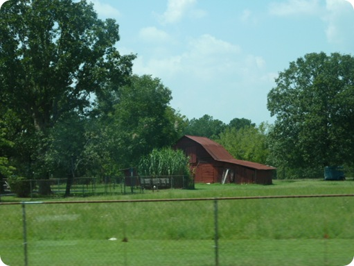 Memphis to Savannah, TN 048