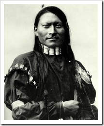 red-armed-panther-cheyenne