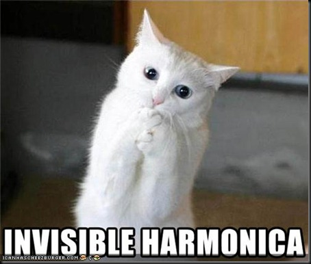 funny-pictures-cat-has-invisible-harmonica
