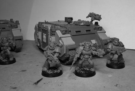 FW Rhinos 2 (800x539)