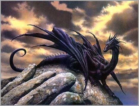 Dragon050
