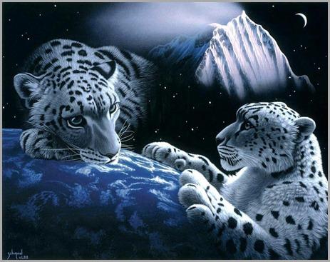 Tigres_Sobre_la_Tierra