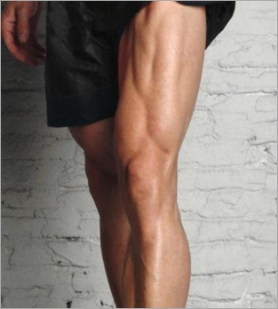 masa muscular piernas
