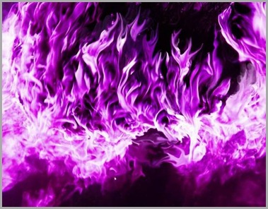 7-violet-purple-flames-tm-1-500.jpg-for-web-large