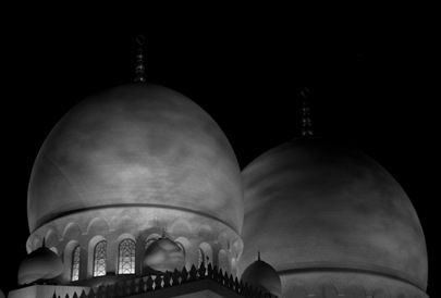 Grand Mosque at Night  (17 of 22)