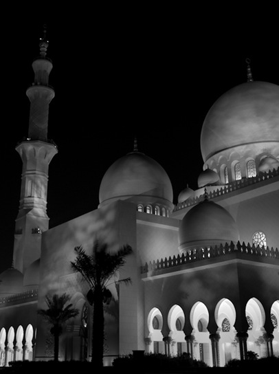 Grand Mosque at Night  (16 of 22)