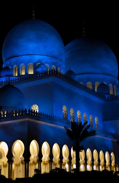 Grand Mosque at Night  (19 of 22)