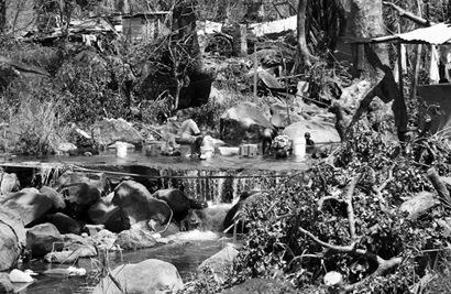 Grenada after Hurricane Ivan  (38 of 53)