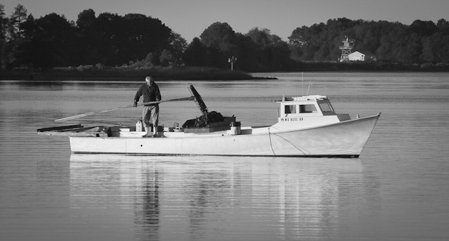 Southern Maryland Oysterman-1