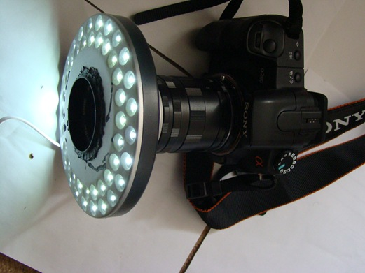 ring light 150