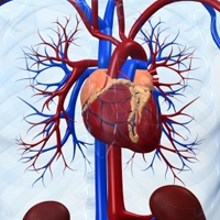 Preventions of Heart Disease post image