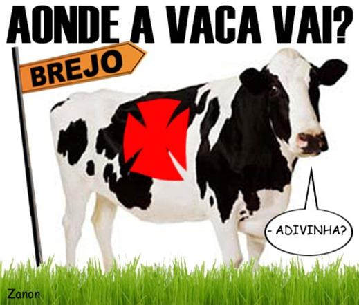 Vasco(8)