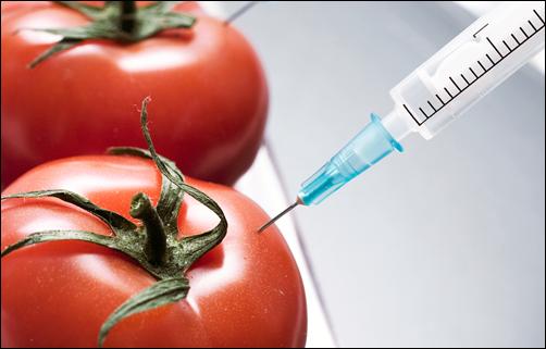 """""""Чорный список"""" продуктів з ГМО: соя (шоколадки), рапс, кукурудза, картопля, помідори, папая, чимало з пасльонових, злаки (хліб, вироби з муки), гідролізованый жир."""