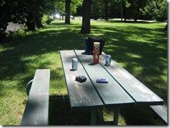 picnic 006