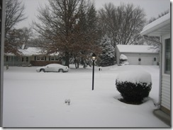 snow2 004