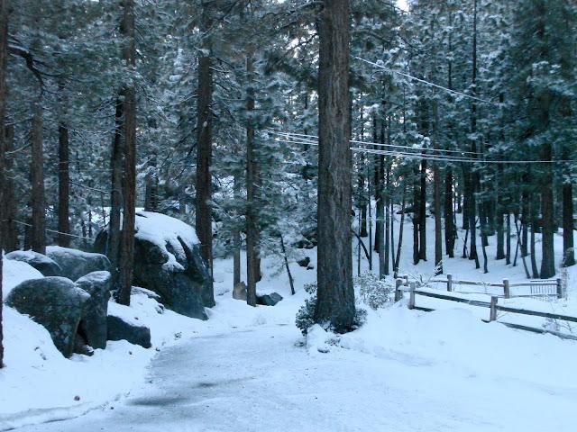 Tahoe Cabin - View out front door